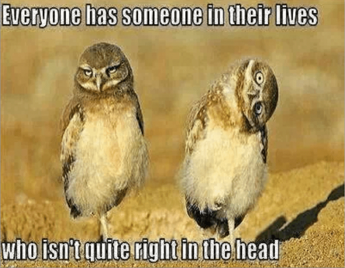 Bird - Everyone has someone in their lives who isn't quite right in the head