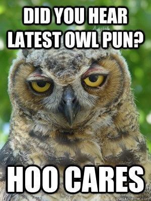 Bird - DID YOU HEAR LATEST OWL PUN? HOO CARES cuickmeme.cont