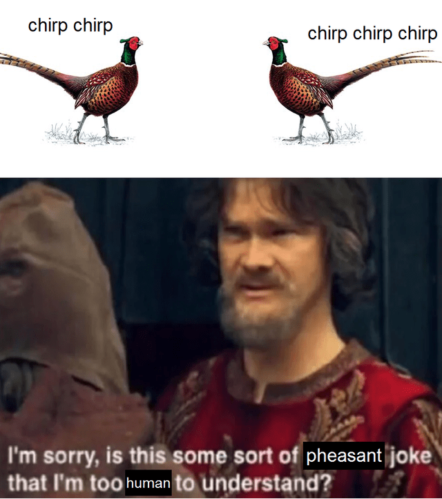 Bird - chirp chirp chirp chirp chirp I'm sorry, is this some sort of pheasant joke that I'm too human to understand?