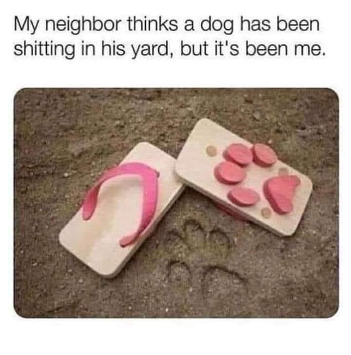 Pink - My neighbor thinks a dog has been shitting in his yard, but it's been me.