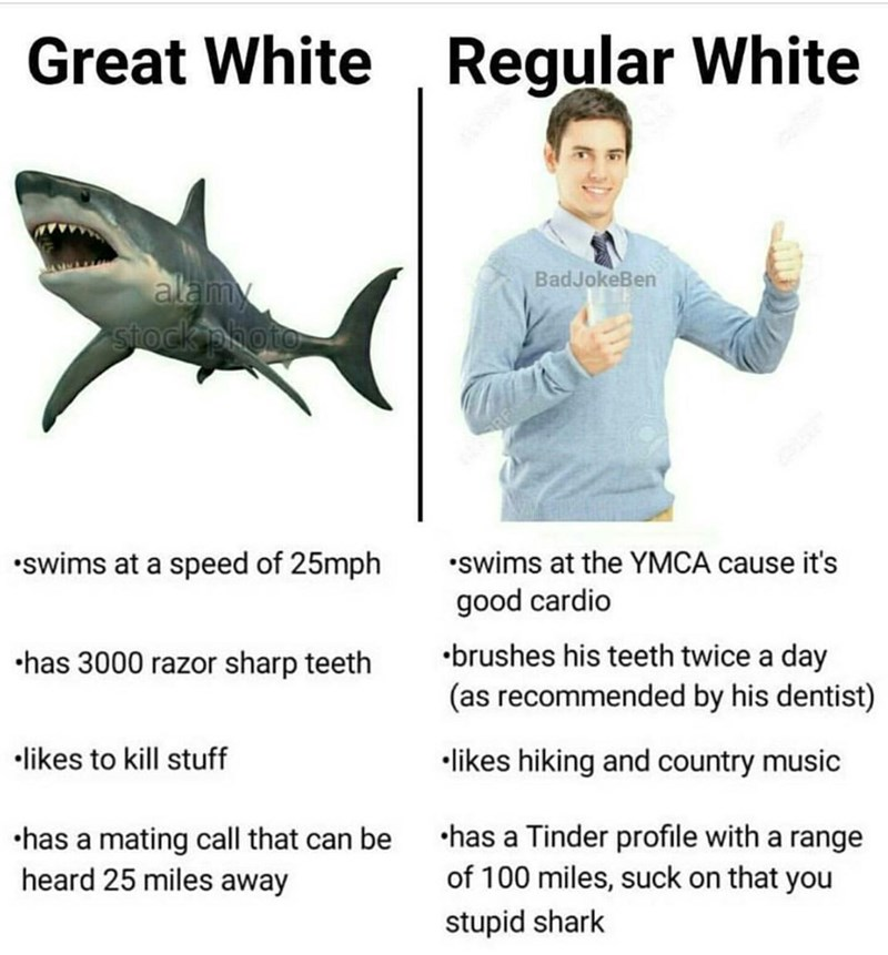 Jaw - Great White Regular White BadJokeBen alamy stock photo •swims at a speed of 25mph •swims at the YMCA cause it's good cardio •brushes his teeth twice a day (as recommended by his dentist) •has 3000 razor sharp teeth •likes to kill stuff •likes hiking and country music •has a mating call that can be heard 25 miles away •has a Tinder profile with a range of 100 miles, suck on that you stupid shark