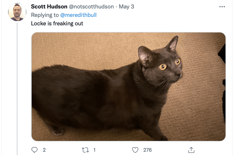 Cat - Scott Hudson @notscotthudson · May 3 Replying to @meredithbull Locke is freaking out 2 27 1 276