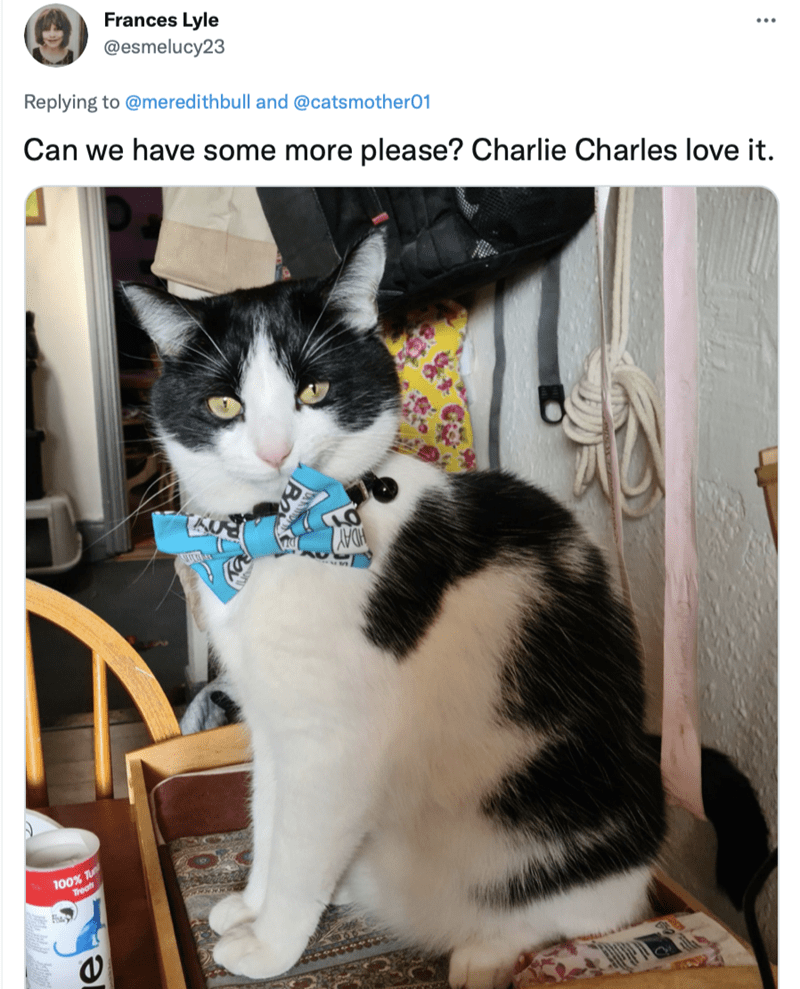Cat - Frances Lyle @esmelucy23 Replying to @meredithbull and @catsmother01 Can we have some more please? Charlie Charles love it. ADAY 100% T Treats