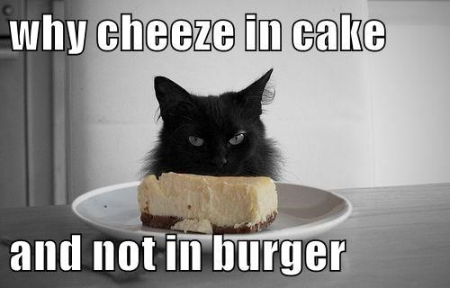 Cat - why cheeze in cake and not in burger