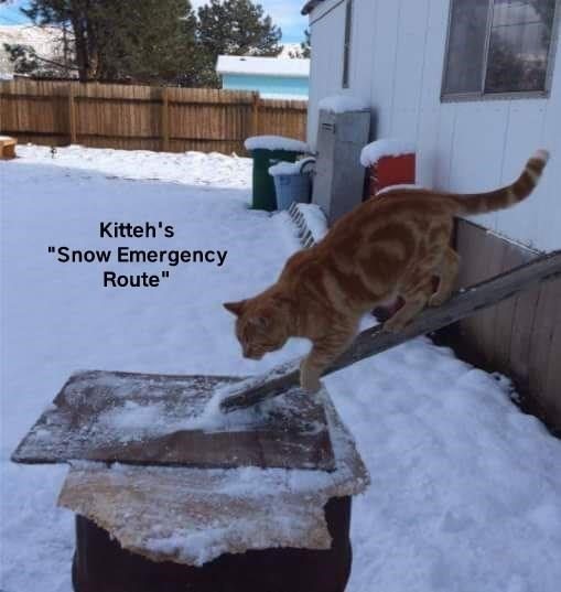 """Snow - Kitteh's """"Snow Emergency Route"""""""