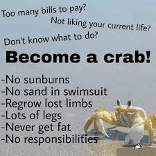 Font - Too many bills to pay? Not liking your current life? Don't know what to do? Become a crab! -No sunburns -No sand in swimsuit -Regrow lost limbs -Lots of legs -Never get fat --No responsibilities