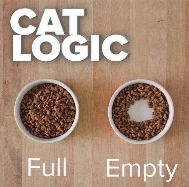 Brown - CAT LOGIC Full Empty