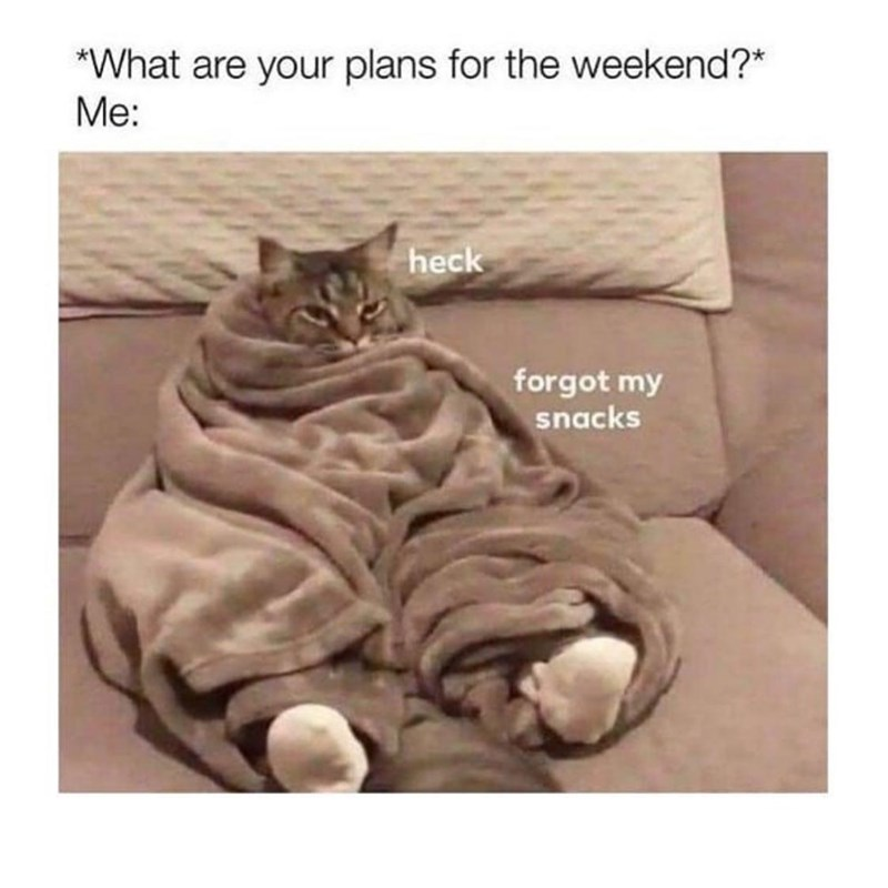 Cat - *What are your plans for the weekend?* Me: heck forgot my snacks