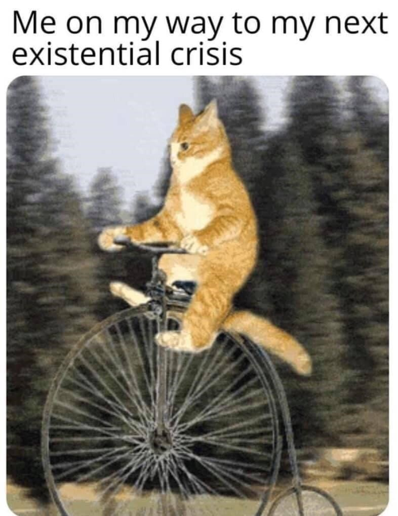 Bicycle - Me on my way to my next existential criśsis