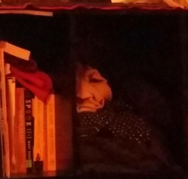 Bookcase - SP K waRr BOAD