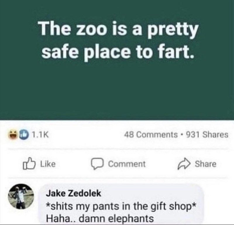 Font - The zoo is a pretty safe place to fart. 60 1.1K 48 Comments 931 Shares Like Comment Share Jake Zedolek *shits my pants in the gift shop* Haha.. damn elephants