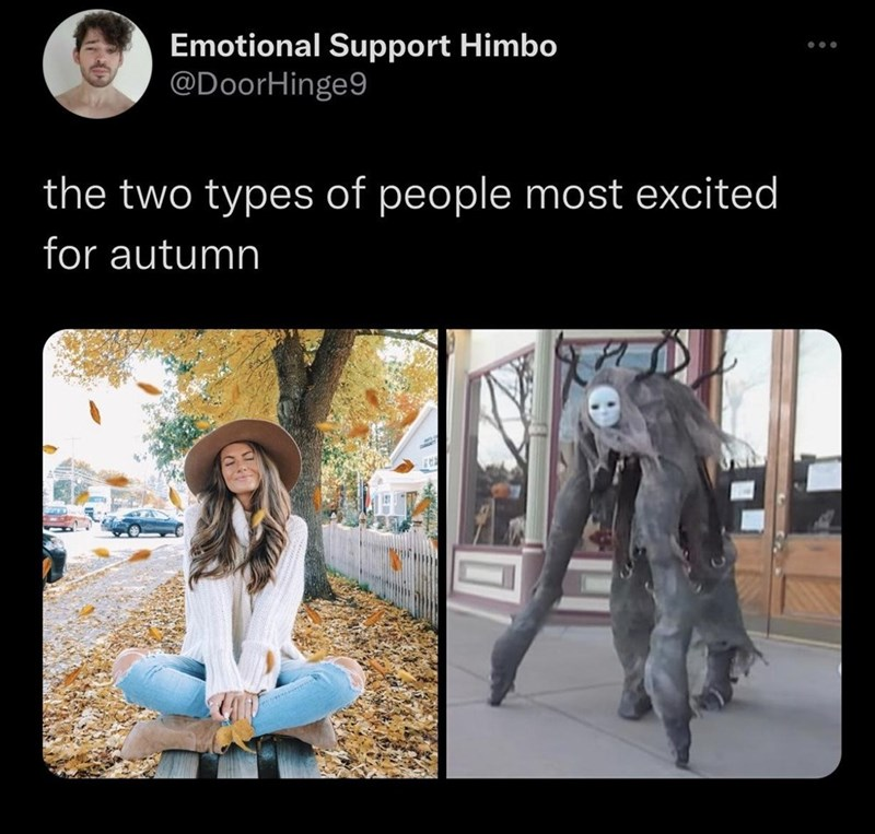 Vertebrate - Emotional Support Himbo @DoorHinge9 the two types of people most excited for autumn