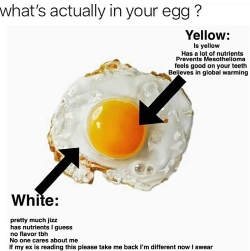 Food - what's actually in your egg ? Yellow: Is yellow Has a lot of nutrients Prevents Mesothelioma feels good on your teeth Beljeves in global warming White: pretty much jizz has nutrients I guess no flavor tbh No one cares about me If my ex is reading this please take me back I'm different now I swear