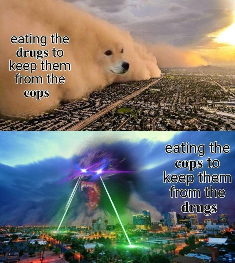 Cloud - eating the drugs to keep them from the cops eating the cops to keep them from the drugs WILIN