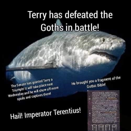 Vertebrate - Terry has defeated the Goths in battle! The Senate has granted Terry a Triumph! It will take place next Wednesday and he will show off more spols and captives there! He brought you a fragment of the Gothic Bible! Hail! Imperator Terentius!