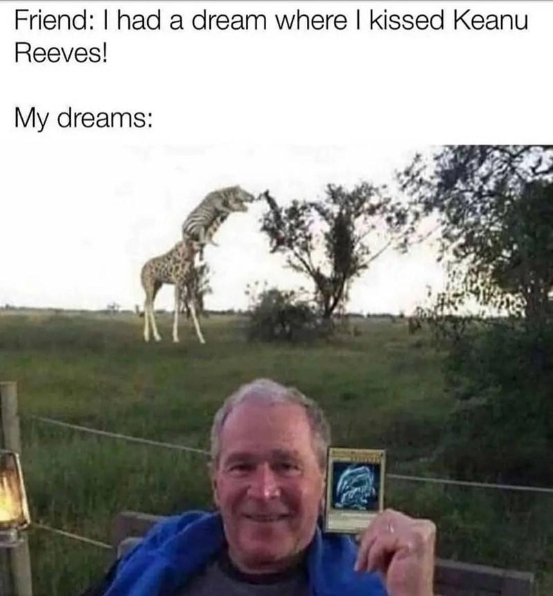 Smile - Friend: I had a dream where I kissed Keanu Reeves! My dreams:
