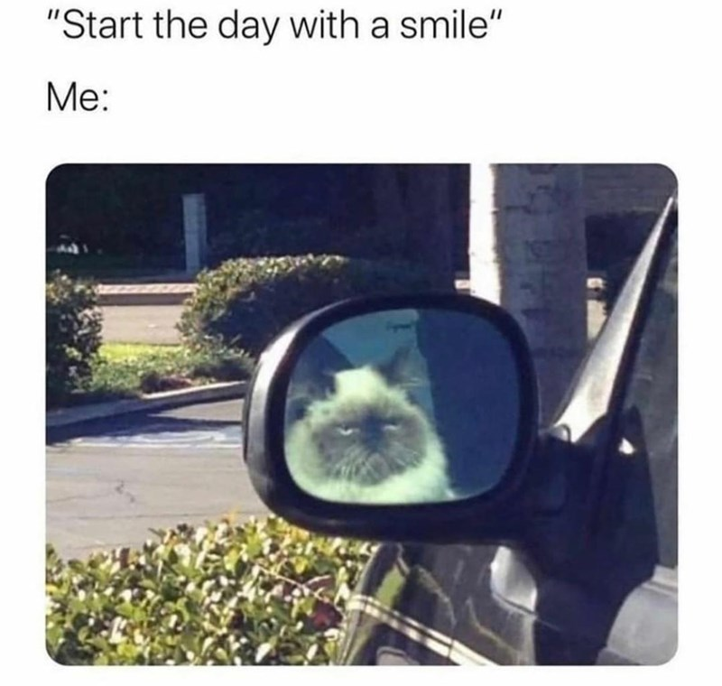 """Mirror - """"Start the day with a smile"""" Me:"""