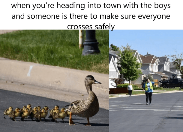 Bird - when you're heading into town with the boys and someone is there to make sure everyone crosses safely