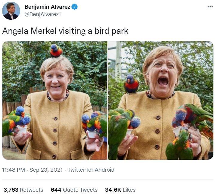 Facial expression - Benjamin Alvarez @BenjAlvarez1 Angela Merkel visiting a bird park 11:48 PM - Sep 23, 2021 - Twitter for Android 3,763 Retweets 644 Quote Tweets 34.6K Likes