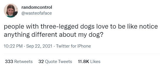 Font - randomcontrol @wasteofaface people with three-legged dogs love to be like notice anything different about my dog? 10:22 PM - Sep 22, 2021 - Twitter for iPhone 333 Retweets 32 Quote Tweets 11.8K Likes