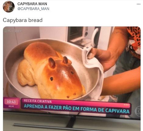 Food - CAPYBARA MAN ... @CAPYBARA_MAN Capybara bread RECEITA CRIATIVA 10:43 APRENDA A FAZER PÃO EM FORMA DE CAPIVARA MOFE