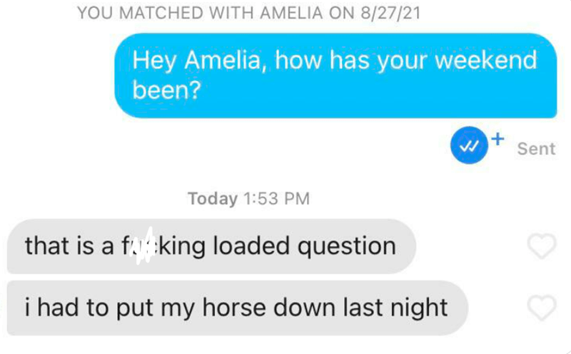 Product - YOU MATCHED WITH AMELIA ON 8/27/21 Hey Amelia, how has your weekend been? Sent Today 1:53 PM that is a f.king loaded question i had to put my horse down last night