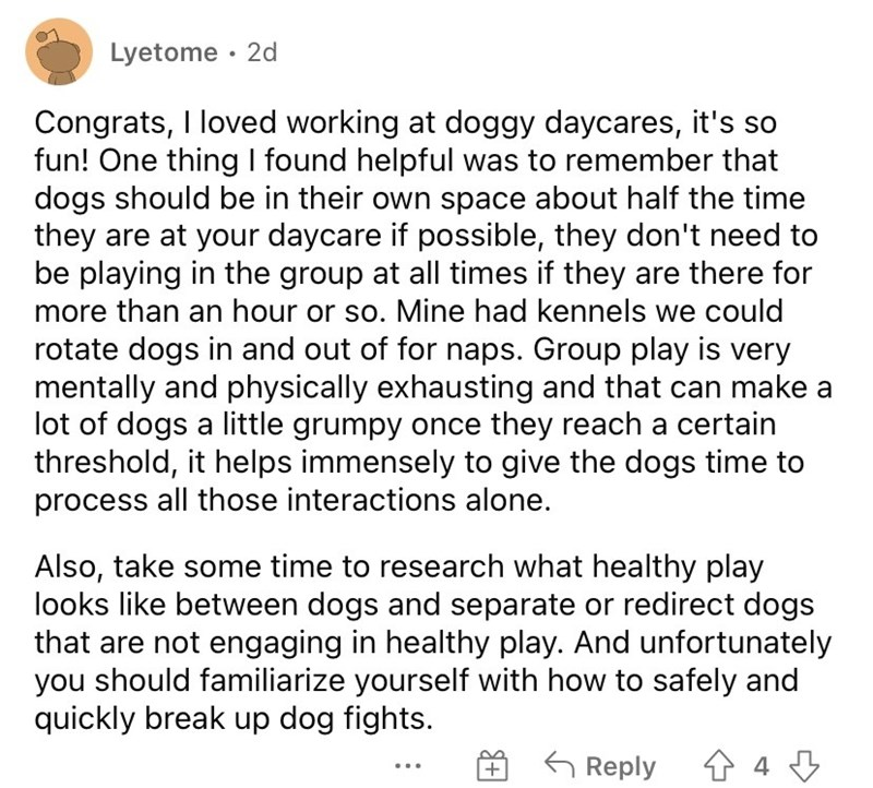 Font - Lyetome · 2d Congrats, I loved working at doggy daycares, it's so fun! One thing I found helpful was to remember that dogs should be in their own space about half the time they are at your daycare if possible, they don't need to be playing in the group at all times if they are there for more than an hour or so. Mine had kennels we could rotate dogs in and out of for naps. Group play is very mentally and physically exhausting and that can make a lot of dogs a little grumpy once they reach