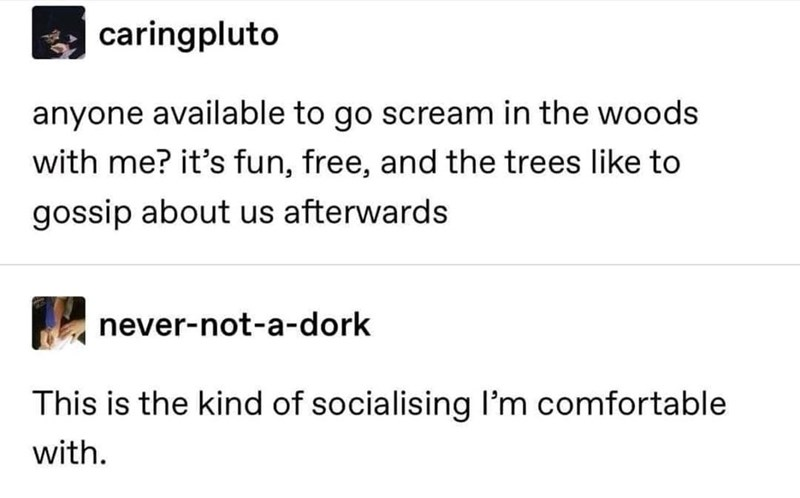 Font - caringpluto anyone available to go scream in the woods with me? it's fun, free, and the trees like to gossip about us afterwards never-not-a-dork This is the kind of socialising I'm comfortable with.