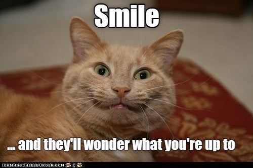 Cat - Smile .and they'll wonder what you're up to ICANHASCHEEZBURGER.COM G