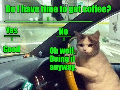 Cat - Dolhave time to getcoffee? Yes No Good Oh well, Doing it anyway