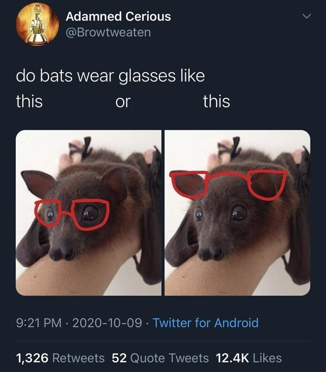 Product - Adamned Cerious @Browtweaten do bats wear glasses like this or this 9:21 PM · 2020-10-09 · Twitter for Android 1,326 Retweets 52 Quote Tweets 12.4K Likes