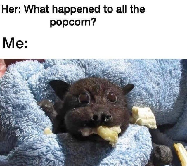 Textile - Her: What happened to all the popcorn? Me: