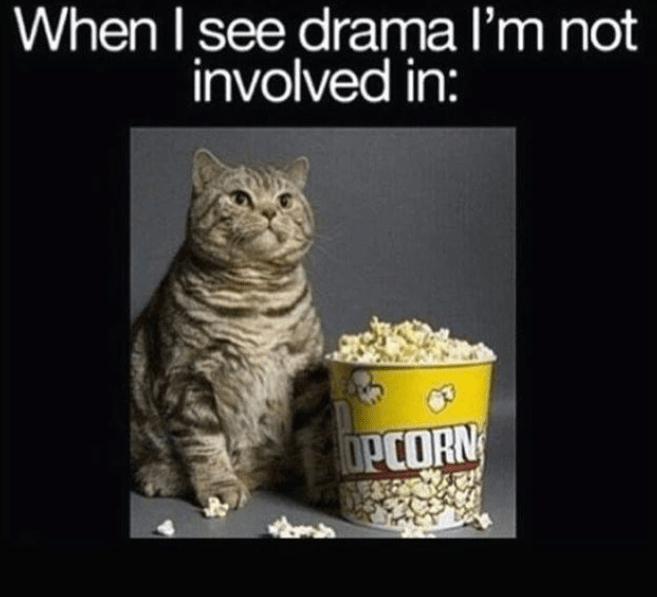 Cat - When I see drama l'm not involved in: OPCORN