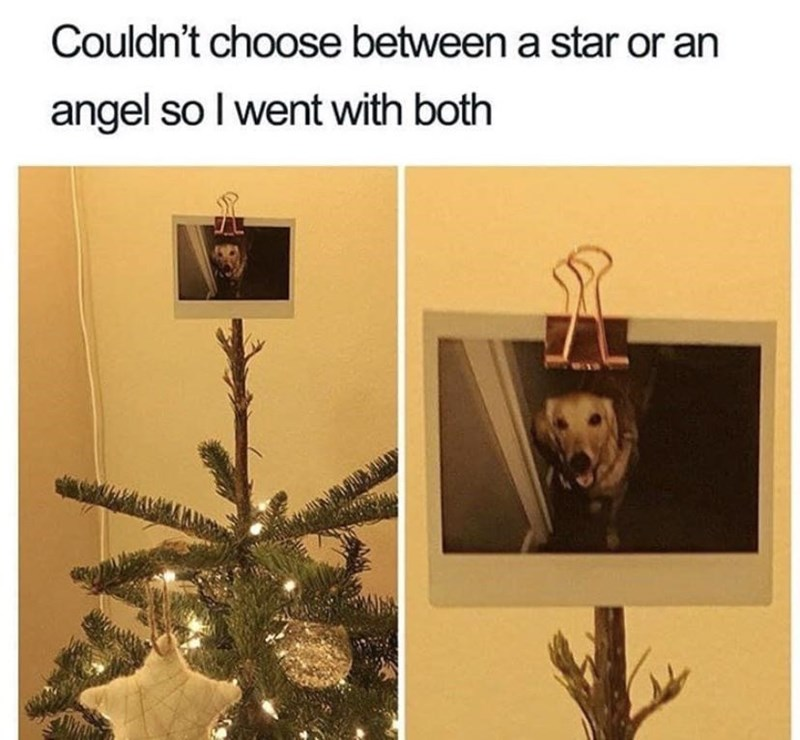 Picture frame - Couldn't choose between a star or an angel so I went with both