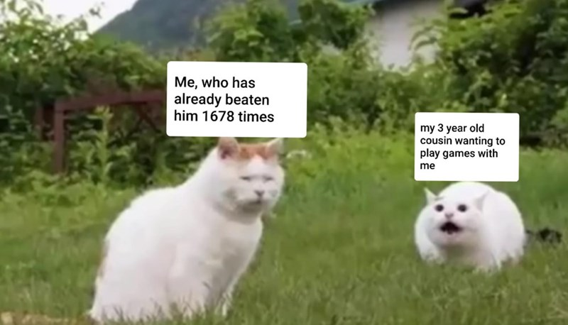 Plant - Me, who has already beaten him 1678 times my 3 year old cousin wanting to play games with me