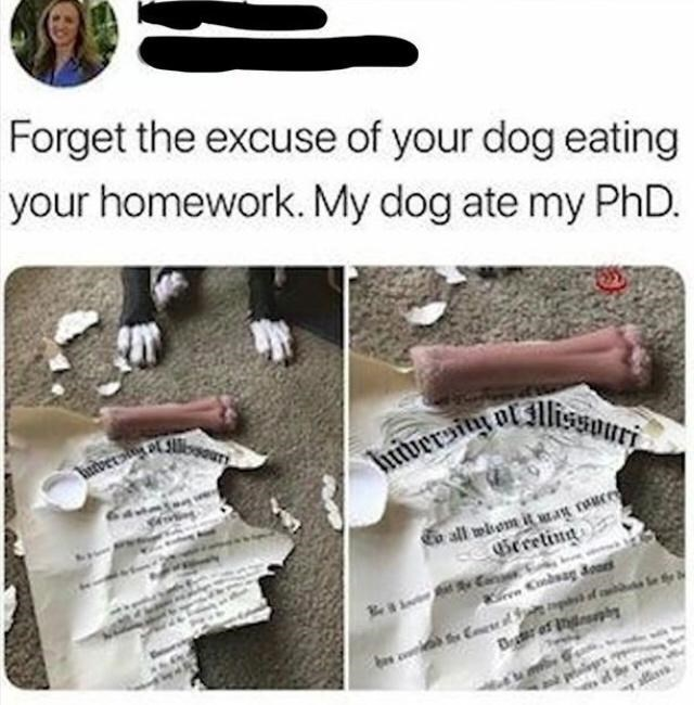 Product - Tuiversiy ol lissouri Forget the excuse of your dog eating your homework. My dog ate my PhD. huversiy or o all wiom it MEAR TAu sGereting allin