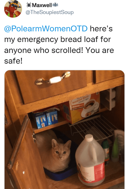 Product - kMaxwell @TheSoupiestSoup @PolearmWomenOTD here's my emergency bread loaf for anyone who scrolled! You are safe! Breakr nd amd Zploc Sder