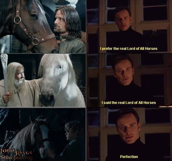 Head - I prefer the real Lord of All Horses I said the real Lord of All Horses Jond RINGS ShiRcposcing Perfection