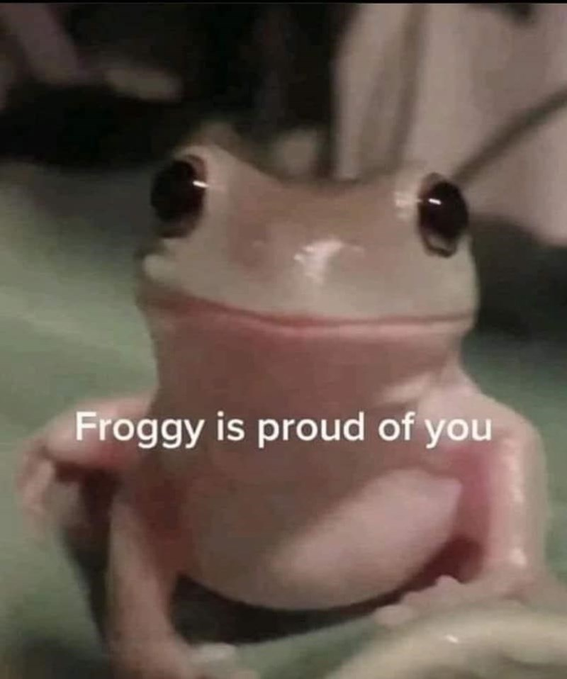 Frog - Froggy is proud of you