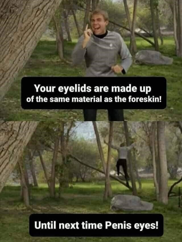 Plant - Your eyelids are made up of the same material as the foreskin! Until next time Penis eyes!