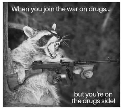 Carnivore - When you join the war on drugs... but you're on the drugs side!