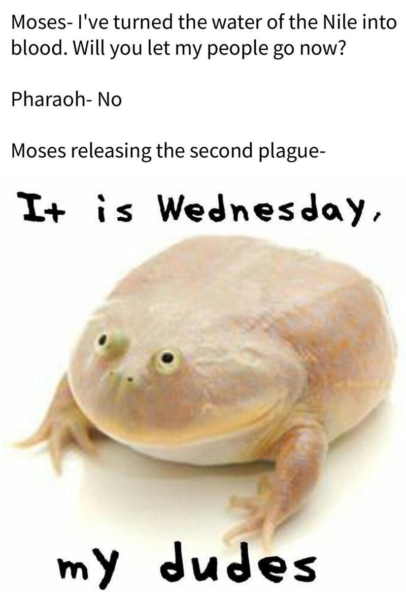 Food - Moses- l've turned the water of the Nile into blood. Will you let my people go now? Pharaoh- No Moses releasing the second plague- It is Wednesday, my dudes