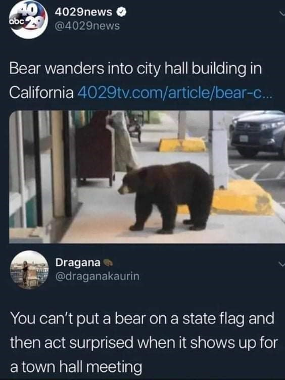 Organism - 40 abc 4029news O @4029news Bear wanders into city hall building in California 4029tv.com/article/bear-c. Dragana @draganakaurin You can't put a bear on a state flag and then act surprised when it shows up for a town hall meeting