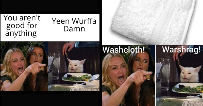 Funny 'Woman Yelling at Cat' memes that exemplify various Southern slang terms