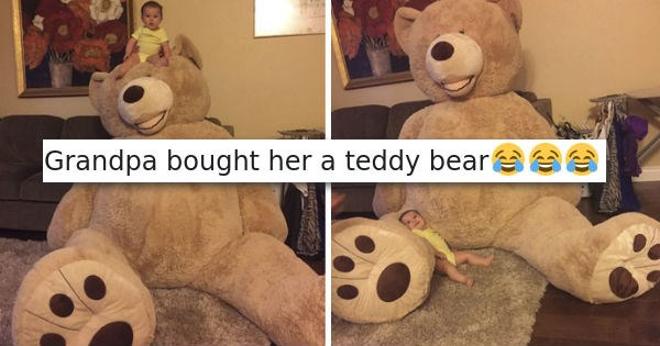 teddy bear list cute parenting Grandpa win