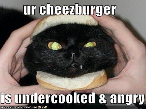 Cheezburger Image 965847808