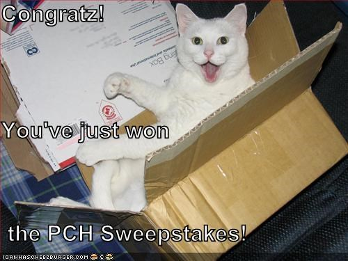 Congratz! You've just won the PCH Sweepstakes! - Cheezburger - Funny