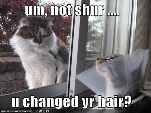 um, not shur ....   u changed yr hair?