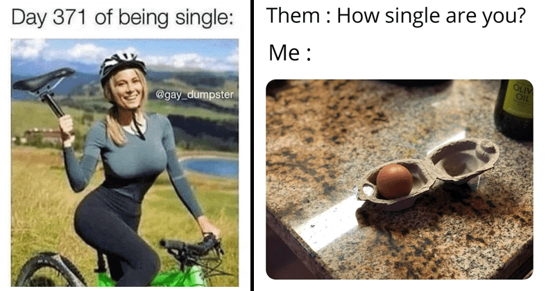 Funny memes about being single, singles day, china, funny memes | Day 371 of being single: @gay dumpster I....need a boyfriend | single egg carton Them How single are you? Me OLIV OIL
