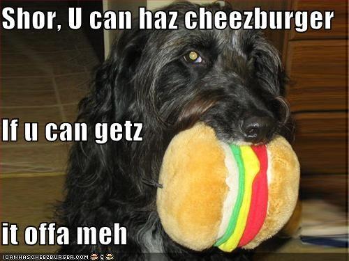 Cheezburger Image 968532224